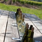 tableart_table_wine_cooler