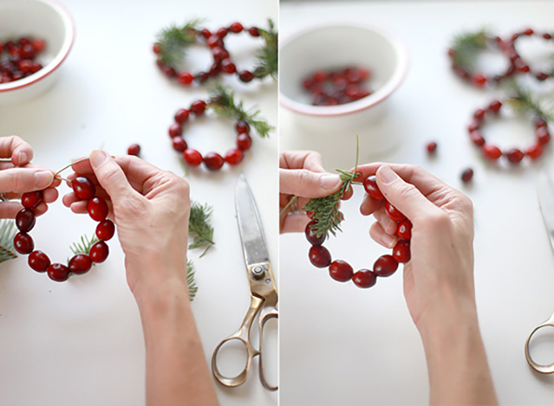 tableart_krikoi-petsetas-apo-cranberries_3